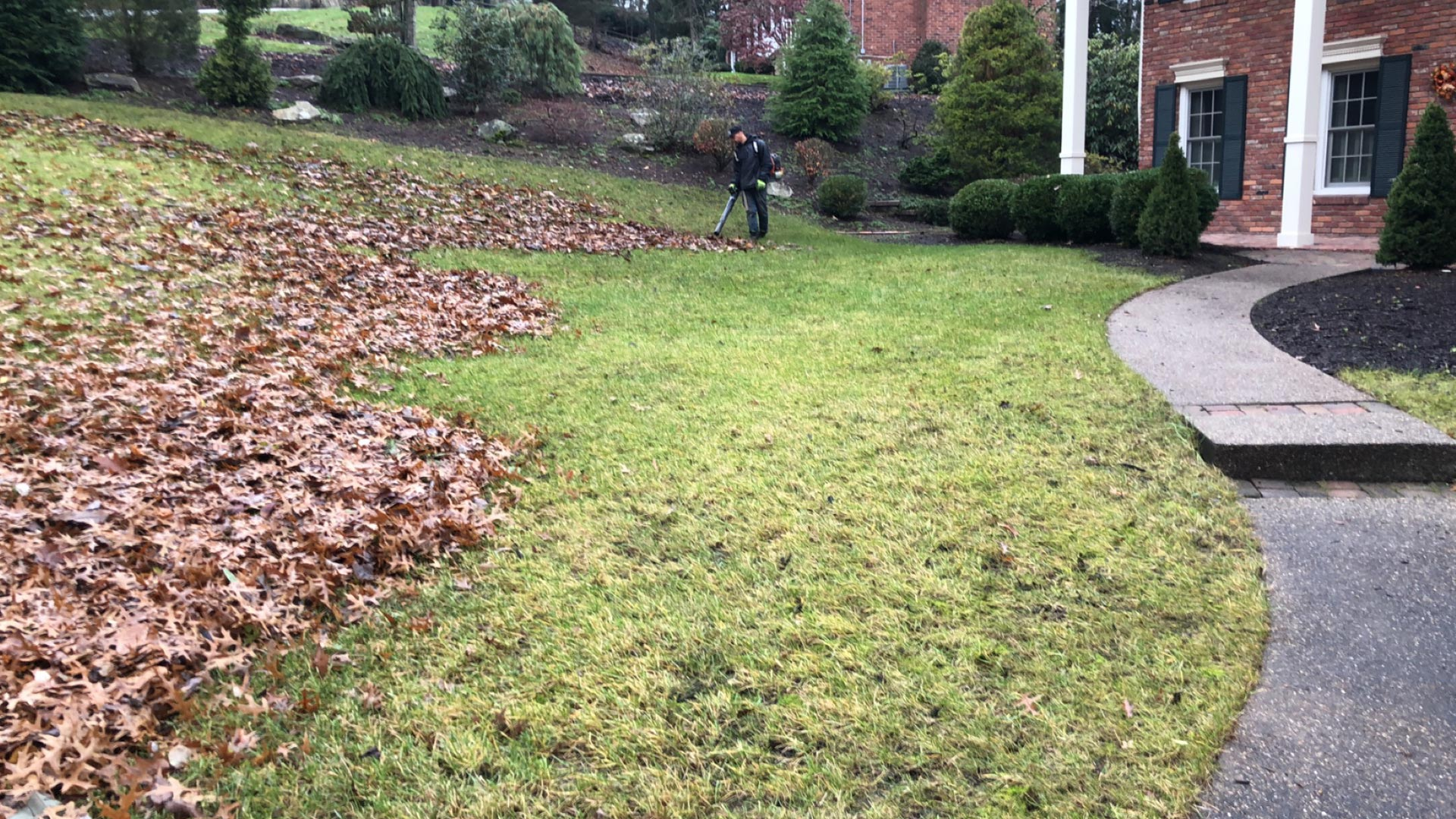 Leaves being cleaned up during the fall season in McMurray, PA.