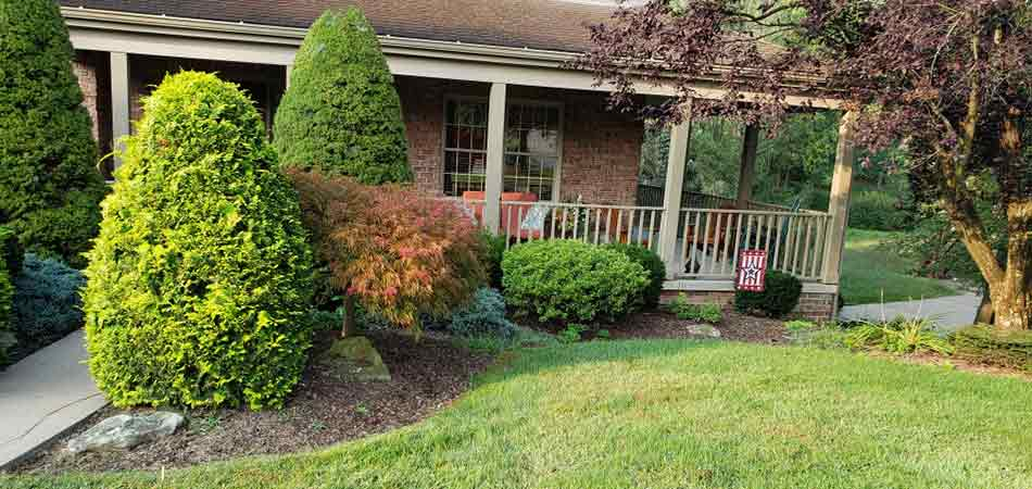 Canonsburg landscape bed that features a classic design and layout by M.J. Donas Landscaping.