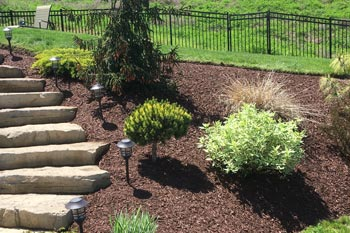 Fresh mulched landscaping bed at a home in Canonsburg, PA.